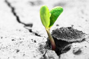 speranza psicoterapia esistenziale