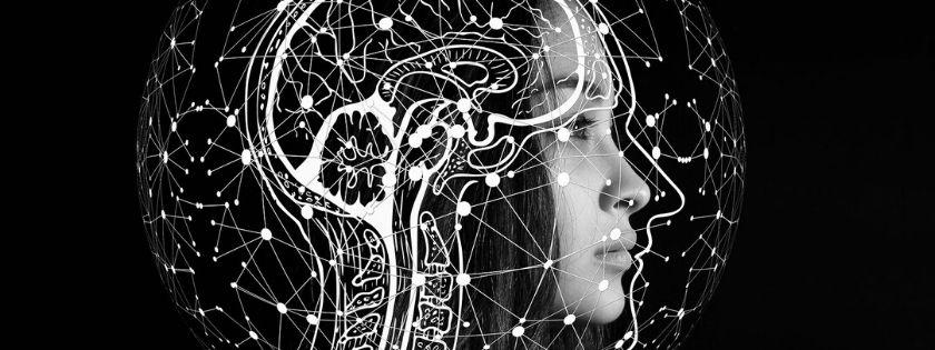 cervello tripartito mclean